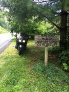 P.Sutton's Avatar